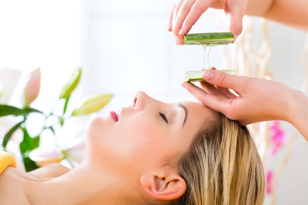 Aloe Vera: The Magic Plant for Skin Care